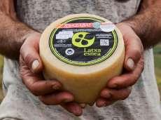 Idiazábal brânză Latxa Esnea